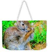 Bunny Secrets Weekender Tote Bag