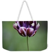 Burgandy Striped Tulip 3 Weekender Tote Bag