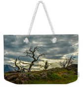 Burmis Tree And Wind Swept Pines Weekender Tote Bag