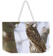 Burrowing Owl Perched On A Branch  Weekender Tote Bag