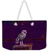 Burrowing Owl Small Owl Bird Nature  Weekender Tote Bag