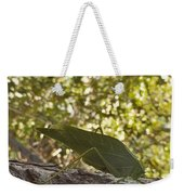 Bush Cricket Weekender Tote Bag