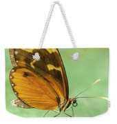 Butterfly Eueides Isabella Weekender Tote Bag