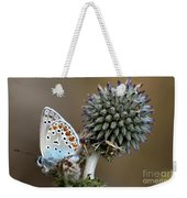 butterfly on a Echinops adenocaulon Weekender Tote Bag