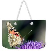 butterfly on a Silybum marianum I Weekender Tote Bag