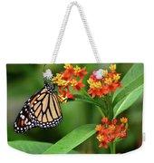 Butterfly Resting On Flower Weekender Tote Bag