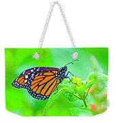 Butterfly Series #13 Weekender Tote Bag