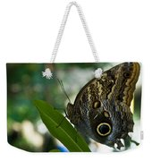 Butterfly Sitting Weekender Tote Bag