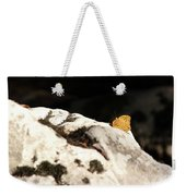 Butterfly Standing On Rock Weekender Tote Bag