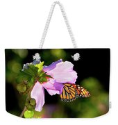 Butterfly Sunset Weekender Tote Bag by Betty LaRue