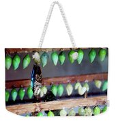 Butterfly With Butterfly Chrysalis 1 Weekender Tote Bag