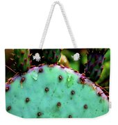 Cacti And Friends Weekender Tote Bag by Jessica Manelis