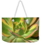 Cactus 4 Weekender Tote Bag