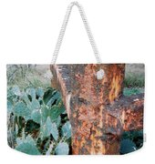 Cactus And Rust Weekender Tote Bag