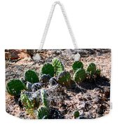 Cactus, Arches National Park Weekender Tote Bag