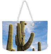 Cactus Arms Weekender Tote Bag