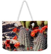 Cactus Bloom 033114f Weekender Tote Bag