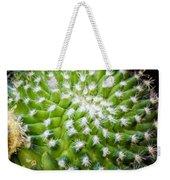 Cactus Feathers Weekender Tote Bag