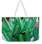 Cactus Fly By Weekender Tote Bag