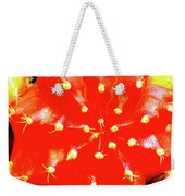 Cactus Graft Weekender Tote Bag
