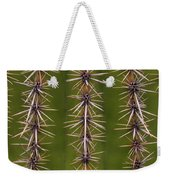 Cactus Spines Weekender Tote Bag