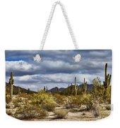 Cactus Valley Weekender Tote Bag