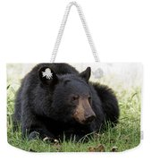 Cades Cove Bear II  Weekender Tote Bag