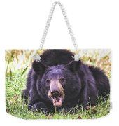 Cades Cove Black Bear Weekender Tote Bag