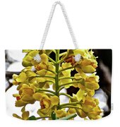 Caesalpinia Cacalaco In Huntington Desert  Gardens In San Marino-california  Weekender Tote Bag