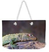 Caiman Lizard Weekender Tote Bag