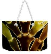 Calcareous Seaweed, Lm Weekender Tote Bag