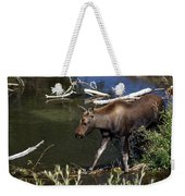 Calf Moose Weekender Tote Bag