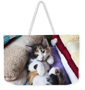 Calico Kitten On Towels Weekender Tote Bag by Garry Gay