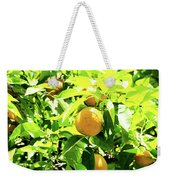 California Bright Orange Fruit Tree In Downtown Sacramento In Ca Weekender Tote Bag