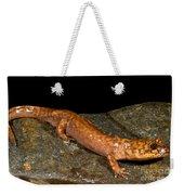 California Giant Salamander Weekender Tote Bag