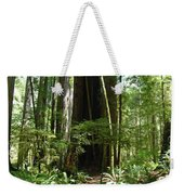 California Redwood Trees Forest Art Weekender Tote Bag