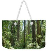 California Redwood Trees Forest Art Prints Weekender Tote Bag