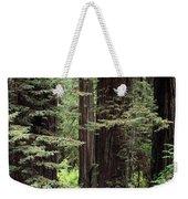 California Redwoods Weekender Tote Bag