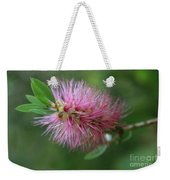Callistemon Viminalis Taree Pink Weeping Bottlebrush Flowering Trees Of Hawaii Weekender Tote Bag