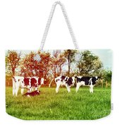 Calves In Spring Field Weekender Tote Bag