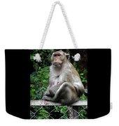 Cambodia Monkeys 3 Weekender Tote Bag