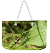Cameo Green Dragonfly Weekender Tote Bag