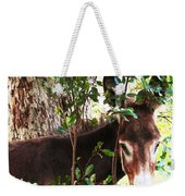 Camera Shy Donkey Weekender Tote Bag