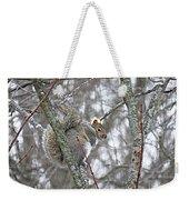 Camera Shy Grey Squirrel Weekender Tote Bag