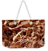 Camouflaged  Sun-drenched  Climb Weekender Tote Bag