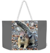 Campground Chipmunk Weekender Tote Bag
