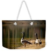 Canada Geese In Golden Sunlight Weekender Tote Bag