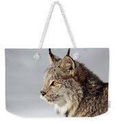 Canada Lynx Up Close Weekender Tote Bag