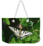 Canadian Tiger Swallowtail Butterfly-underside Weekender Tote Bag