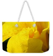 Canna At Sunrise Weekender Tote Bag